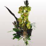 bouquet37[1]